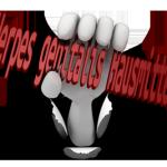 Herpes genitalis Hausmittel Tipps